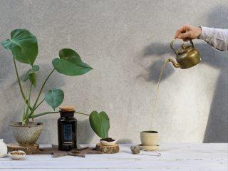 The Organic Tea Project